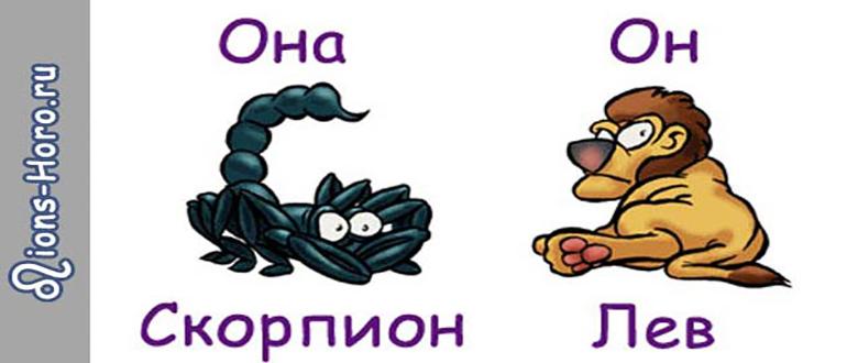 Совместимость мужчины Льва и женщины Скорпиона