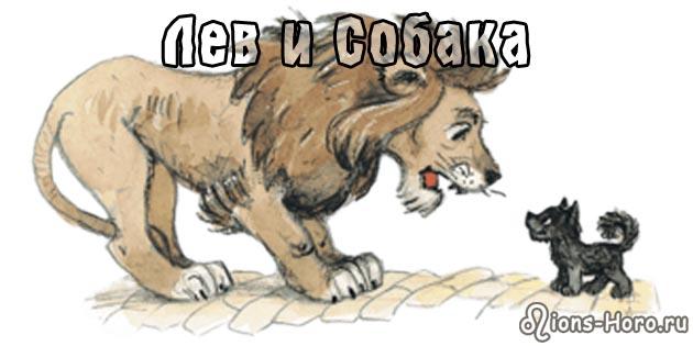 Лев, рожденный в год Собаки